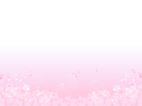 Cherry blossoms and light background