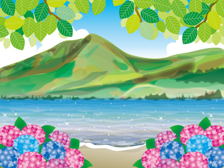 Hydrangea (40) Shoreline of the fresh green lake