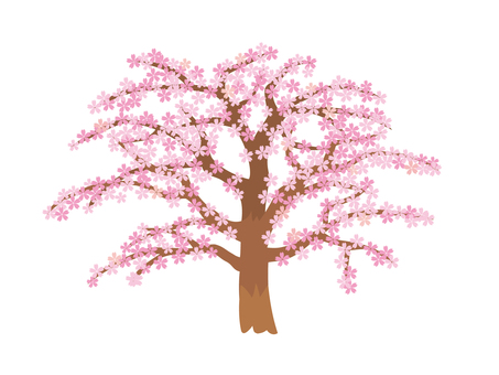봄의 벚꽃