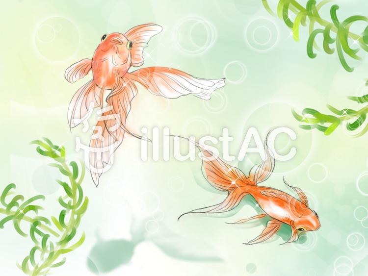 水彩金魚イラスト No 1123059無料イラストならイラストac
