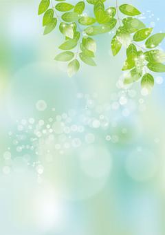 Glittering leaves & sky 61