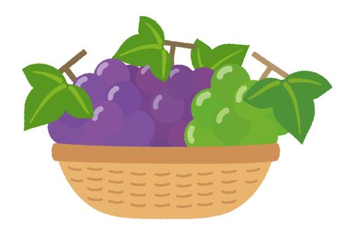 Grape muscat in basket