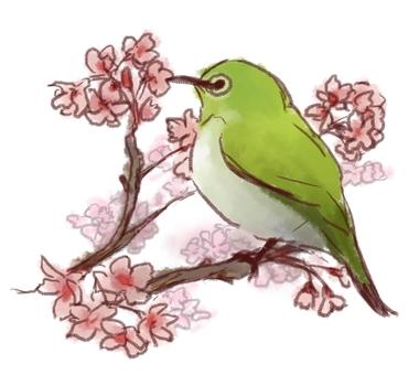 Mizoro and Sakura w / line version
