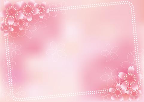 Sakura Sakura & Board 26