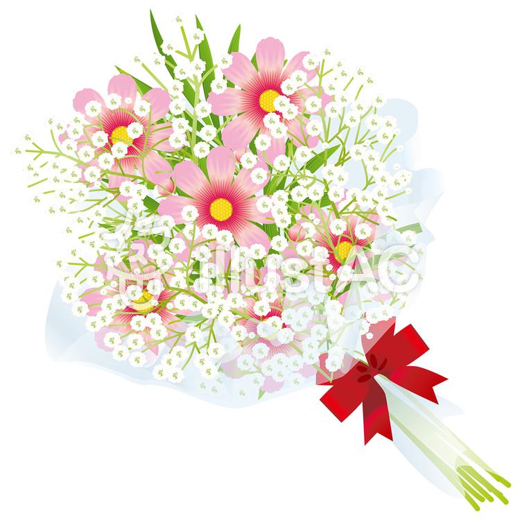 コスモスかすみ草の花束13イラスト No 877685無料イラストなら