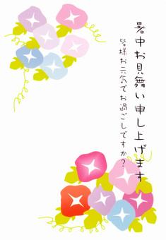 Asagao ①