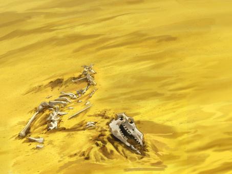 Desert bone