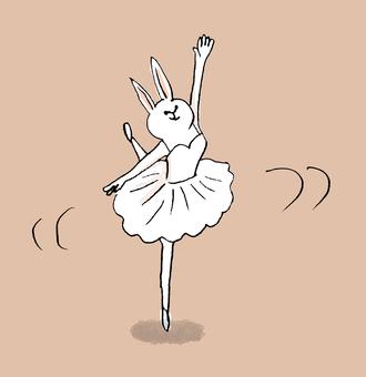 Rabbit Ballerina