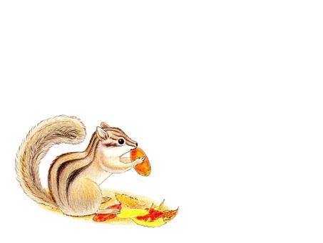 Chipmunks with acorn
