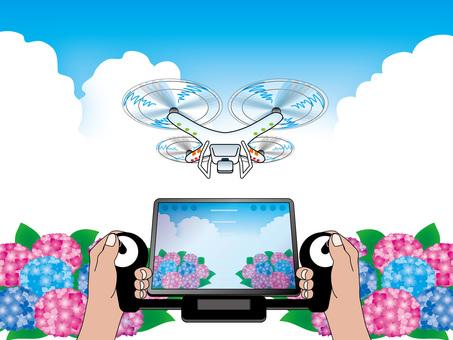 Hydrangea (7) Drone and blue sky