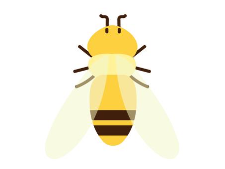 Wasp poison bug