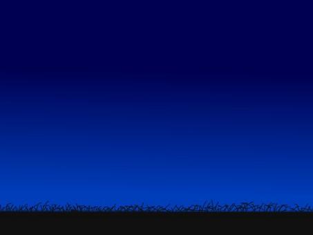 밤의 초원