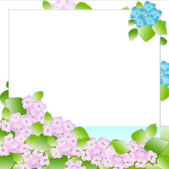 Hydrangea Frame 2