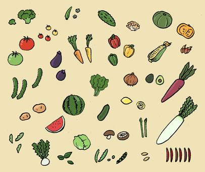 야채 바구니 (컬러)