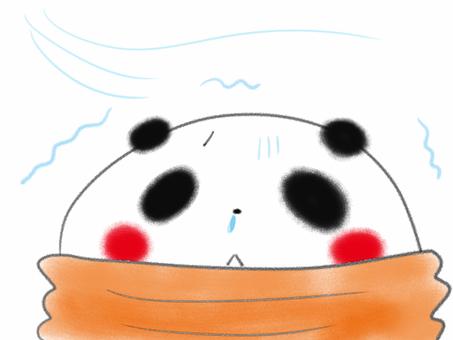 Panda chills