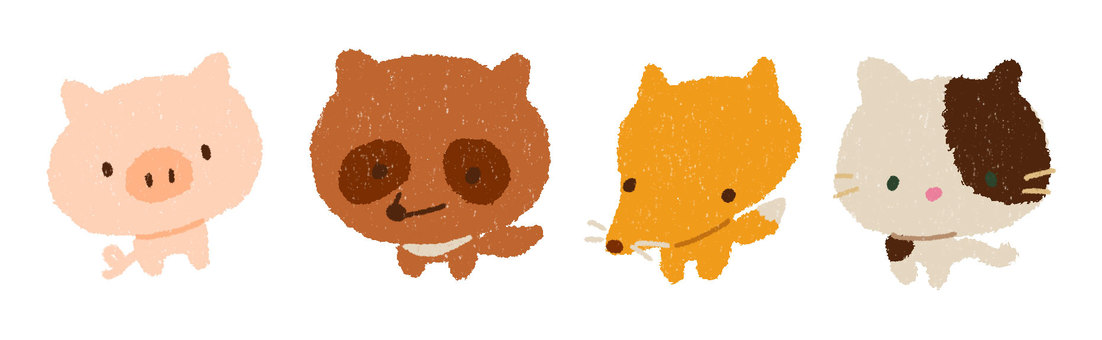 Little pig cat