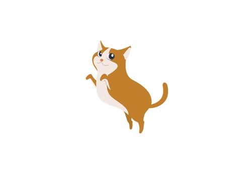 Cat _01