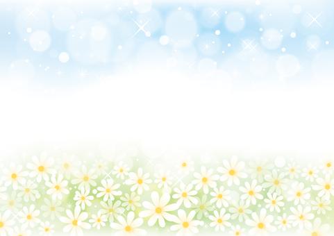 Flower field and sky scenery 01