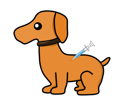 Dog Prevention Injection