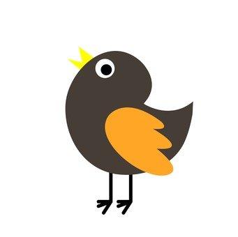 Pop birds