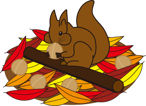 Squirrels and fallen leaves / Squirrel