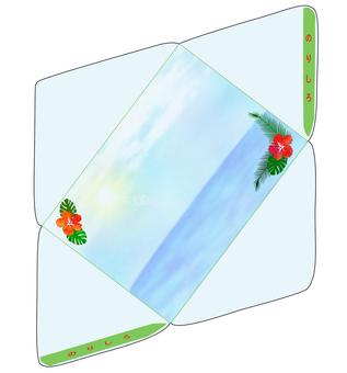 Hibiscus envelope