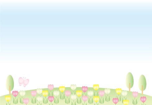 Tulip field (no cloud)