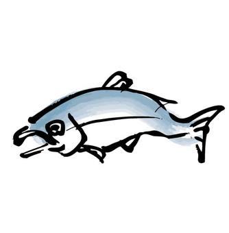 Vigorous salmon