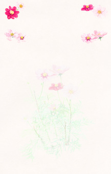 【Handwriting & Japanese paper】 Cosmos background