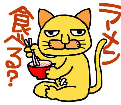 Cat eating ramen