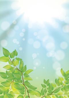 Fresh green vertical