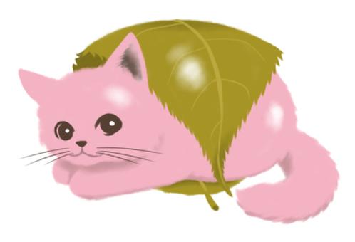 Sakura cake cat