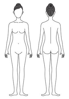 Female body illustration (line drawing)