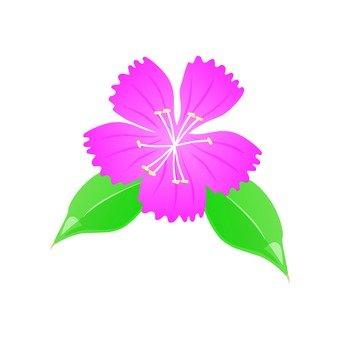 Pink Nadesico