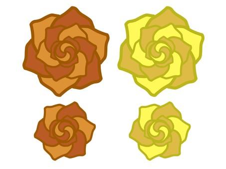 Rose orange · yellow