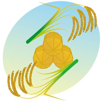 Good harvest of rice