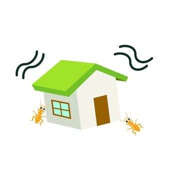 Damage to termites in houses