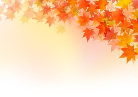 Fall image material 1