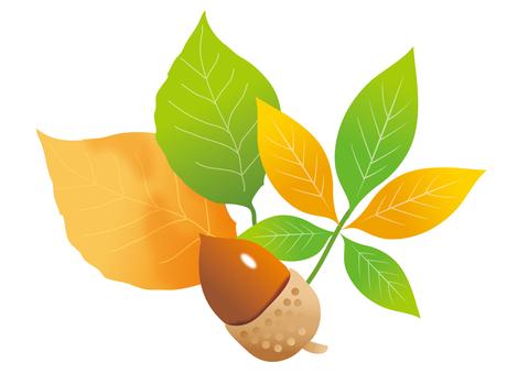 낙엽과 도토리 컷