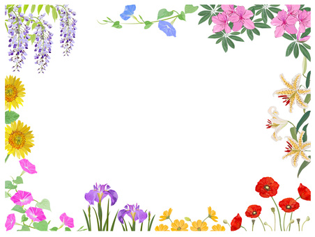 여름 꽃 프레임