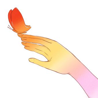 손과 나비 (흰색 배경)