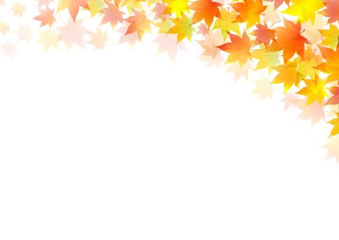 Autumn 158
