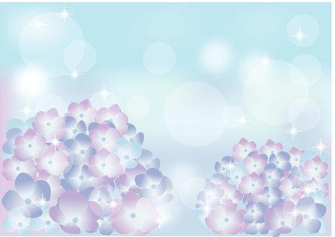 Hydrangea image
