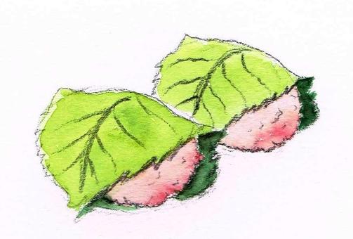 Sakura mochi watercolor