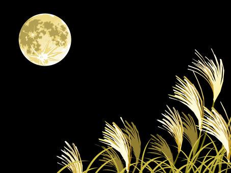 月月和滿月