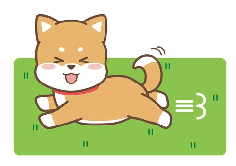 개 _ 잔디