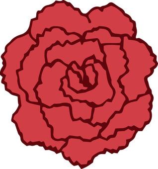 꽃 (카네이션 1 개)