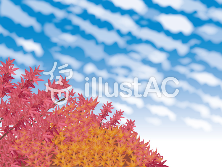 紅葉と青空のイラスト