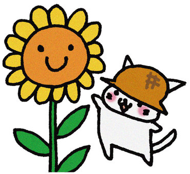 Sunflowers and cats