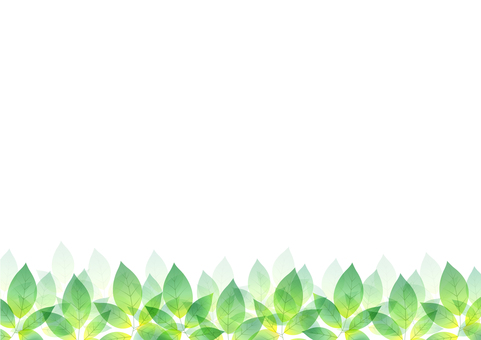 Fresh green material 95
